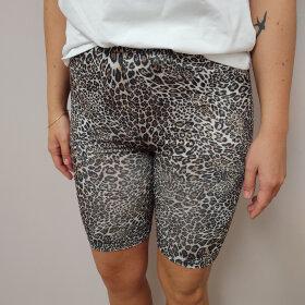 Noella Asvilda Shorts